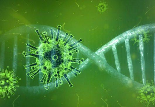 Cómo protegerse del Coronavirus, según la OMS