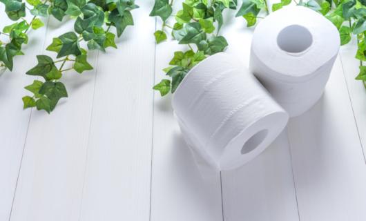 Artículos de celulosa: cuando más lo necesitas